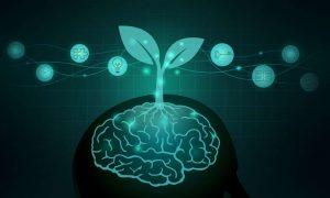 Growth-Mindset Principles