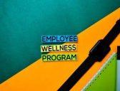 How to create an employee wellness program