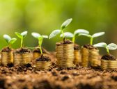 5 tips to pitch investors for seed funding
