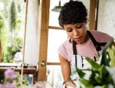 How to give your small business a boost post-COVID-19
